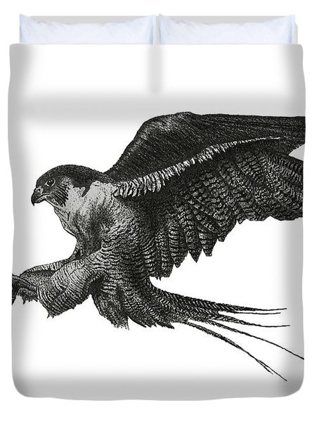 Peregrine Hawk Or Falcon Black And White With Pen And Ink Drawing Duvet Cover by Mario  Perez