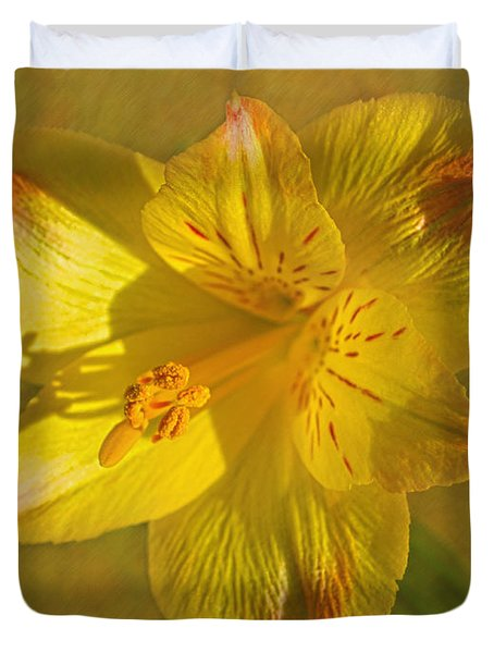 Peruvian Lily Duvet Cover by Sandi OReilly