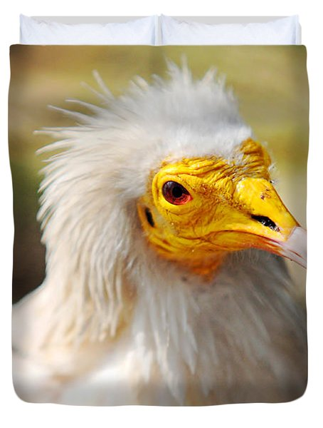 Pharaoh Chicken. Egyptian Vulture Duvet Cover by Jenny Rainbow