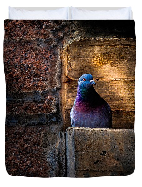 Pigeon of the City Duvet Cover by Bob Orsillo