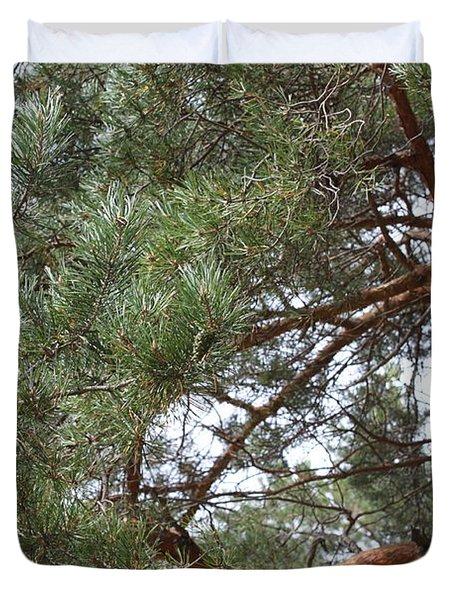 Pine Branches Duvet Cover by Evgeny Pisarev