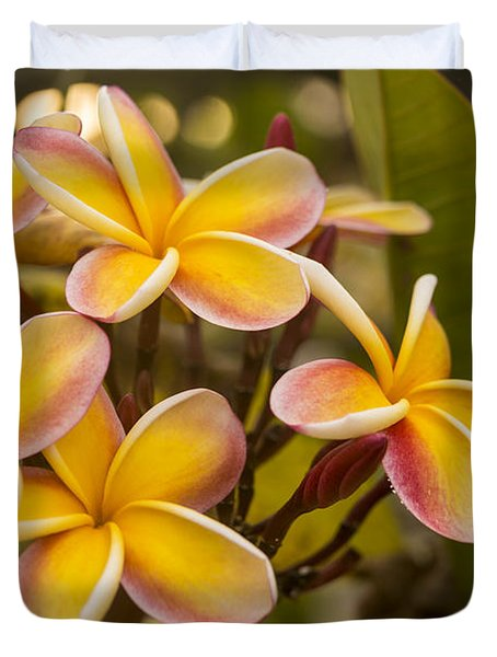 Pink and Yellow Plumeria 2 Duvet Cover by Brian Harig