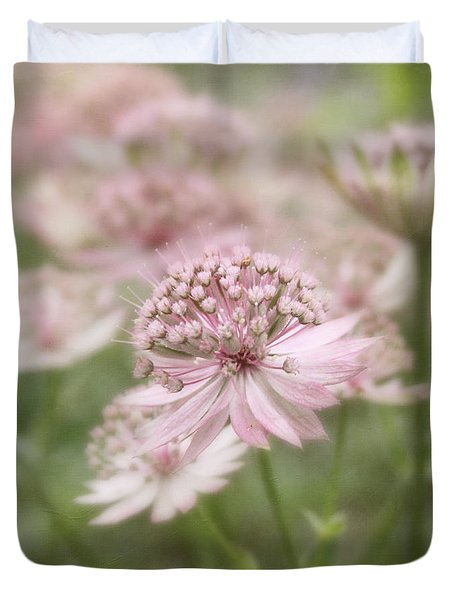 Pink Blush Duvet Cover by Kim Hojnacki