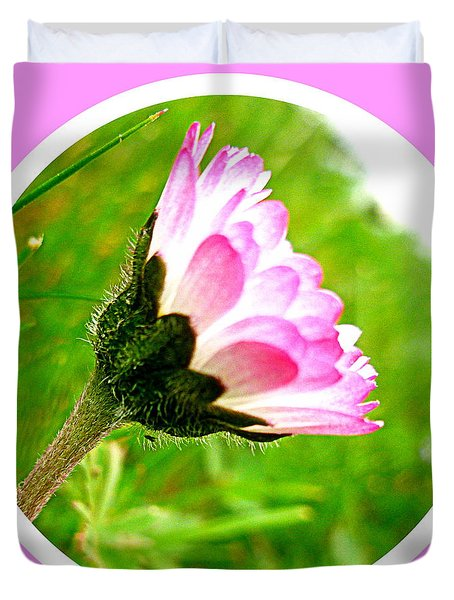 Pink Daisy  Duvet Cover by The Creative Minds Art and Photography