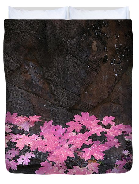 Pink Fall colors in Sedona Arizona Duvet Cover by Dave Dilli