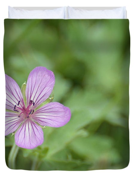 Pink Geranium In Bloom In Yellowstone Duvet Cover by Bruce Gourley