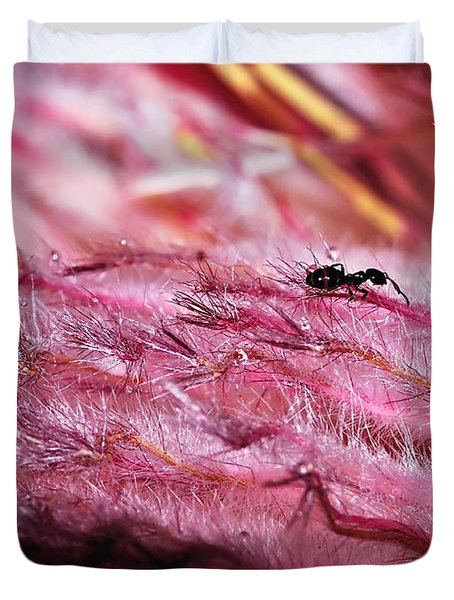 Pink Ice Protea Macro With Ant Duvet Cover by Kaye Menner