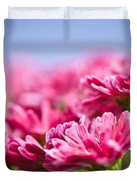 Pink mums Duvet Cover by Elena Elisseeva