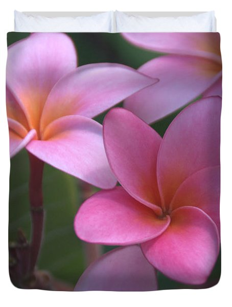 Pink Plumeria Duvet Cover by Brian Harig