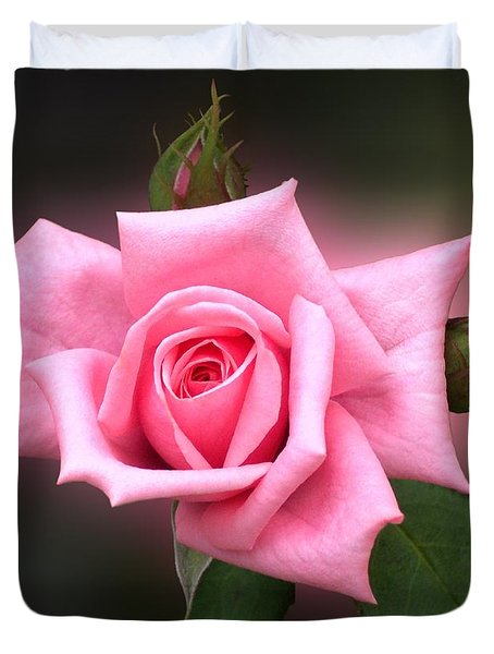 Pink Rose Duvet Cover by Thomas Woolworth