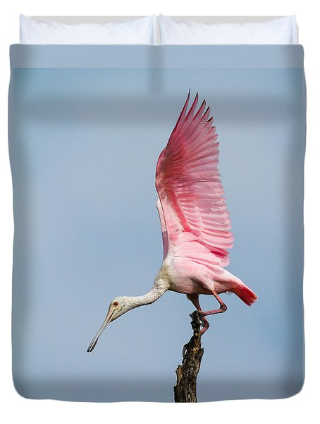 Pink Spoonbill Ready For Takeoff Duvet Cover by Bill Swindaman