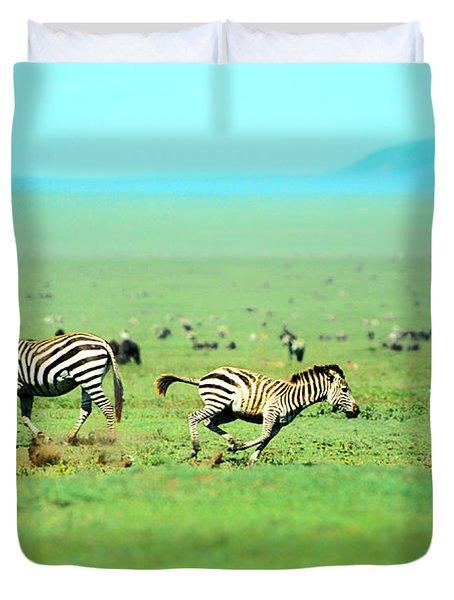 Playfull Zebras Duvet Cover by Sebastian Musial
