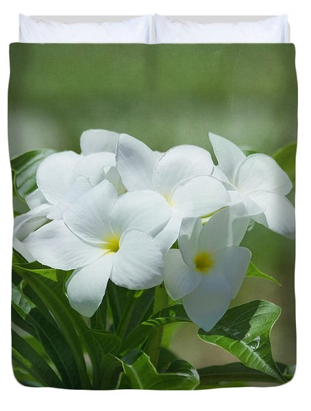 Plumeria - Tropical Flowers Duvet Cover by Kim Hojnacki