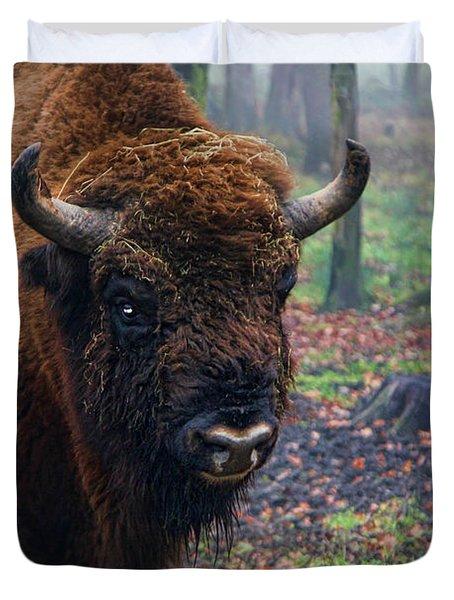 Polish Bison Duvet Cover by Mariola Bitner
