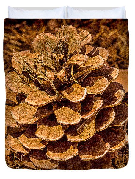 Ponderosa Pine Cone Duvet Cover by  Bob and Nadine Johnston
