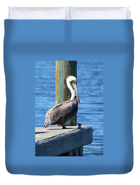 Posing Pelican Duvet Cover by Carol Groenen