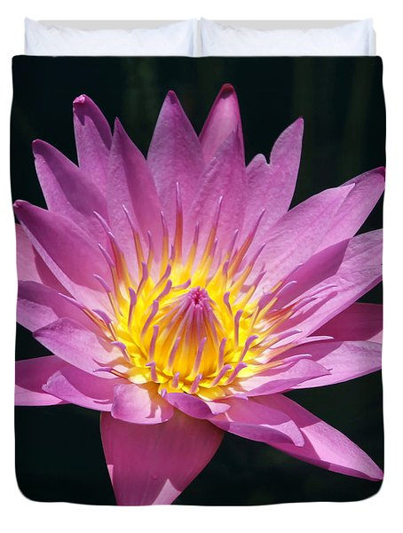 Pretty In Pink And Yellow Water Lily Duvet Cover by Sabrina L Ryan