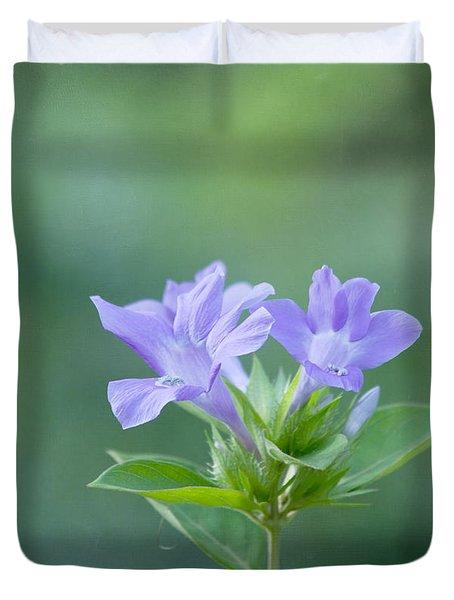 Pretty In Purple Duvet Cover by Kim Hojnacki
