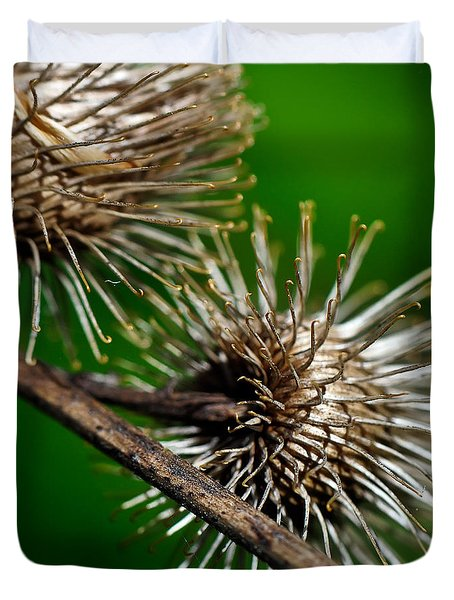 Prickly Duvet Cover by Lois Bryan