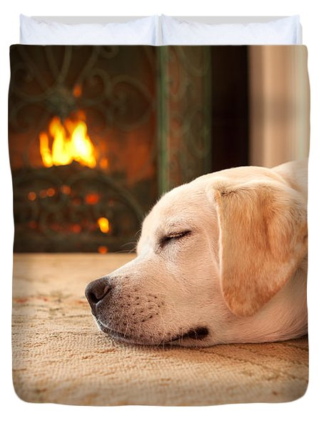 Puppy Sleeping By A Fireplace Duvet Cover by Diane Diederich
