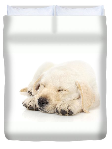 Puppy Sleeping On Paws Duvet Cover by Johan Swanepoel