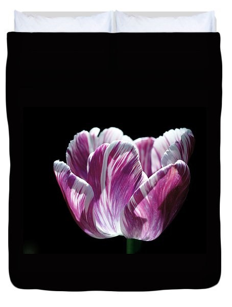 Purple And White Marbled Tulip Duvet Cover by Rona Black