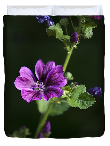 Purple Hollyhock Flowers Duvet Cover by Christina Rollo