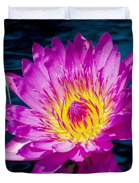 Purple Lily on the water Duvet Cover by Nick Zelinsky