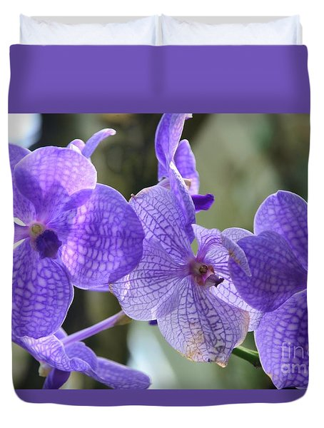 Purple Orchids Duvet Cover by Kathleen Struckle