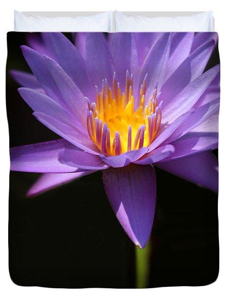 Purple Petals Duvet Cover by Sabrina L Ryan