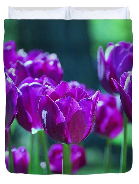 Purple Tulips Duvet Cover by Allen Beatty