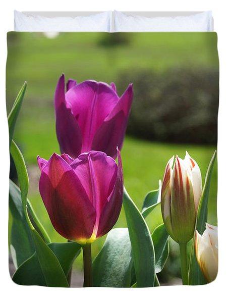 Purple Tulips Garden Art Print Tulip Flowers Duvet Cover by Baslee Troutman