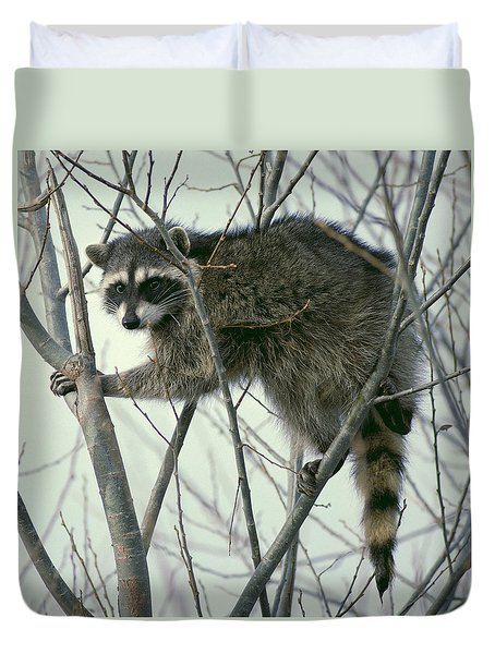 Up A Tree Duvet Cover by Ellen Henneke