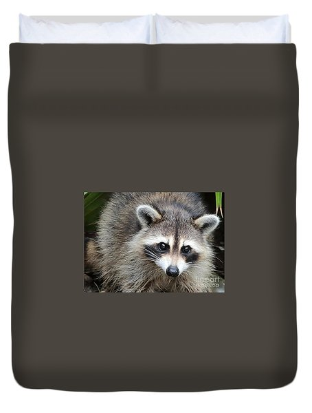 Raccoon Eyes Duvet Cover by Carol Groenen