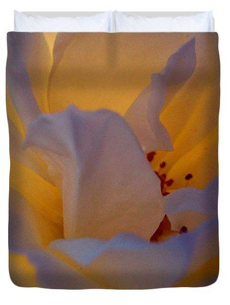 Radiance Duvet Cover by Cathleen Cario-Reece