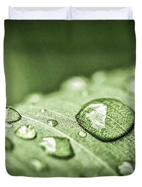 Rain Drops On Green Leaf Duvet Cover by Elena Elisseeva