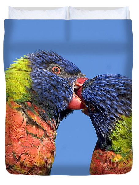 Rainbow Lorikeets Duvet Cover by Steven Ralser