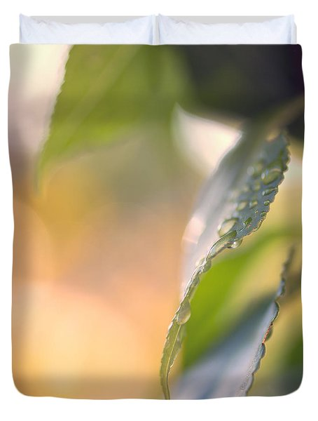 Raindrops Three Duvet Cover by Bob Orsillo