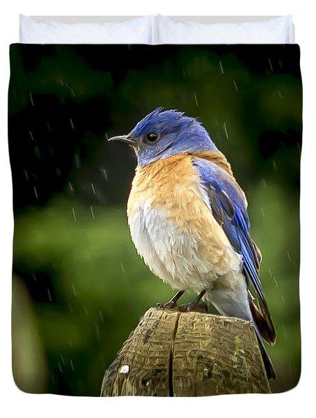 Raining Duvet Cover by Jean Noren