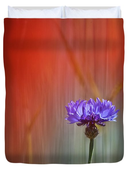 Red And Blue Duvet Cover by Heiko Koehrer-Wagner