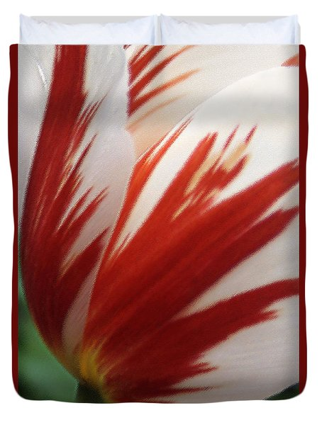 Red And White Tulip  Duvet Cover by Ben and Raisa Gertsberg
