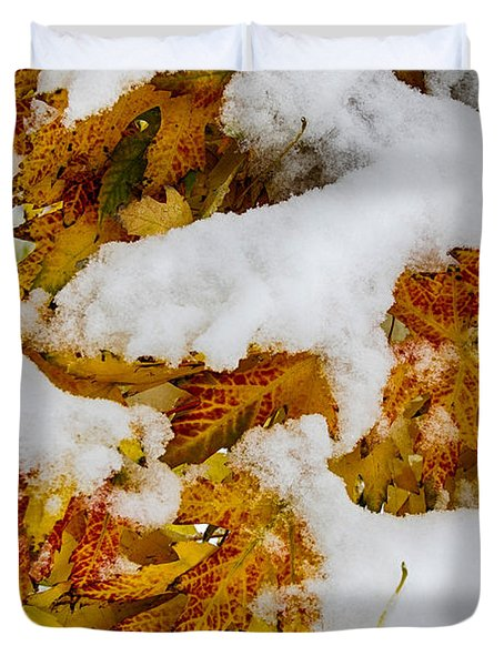 Red Autumn Maple Leaves With Fresh Fallen Snow Duvet Cover by James BO  Insogna