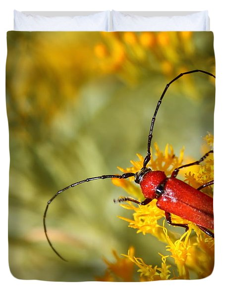 Red Beetle Duvet Cover by Marty Fancy