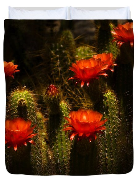 Red Cactus Flowers II  Duvet Cover by Saija  Lehtonen