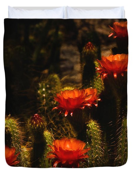 Red Cactus Flowers Duvet Cover by Saija  Lehtonen
