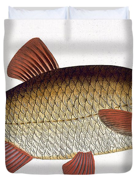 Red Carp Duvet Cover by Andreas Ludwig Kruger