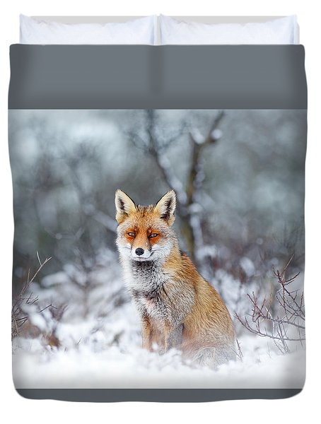 Red Fox Blue World Duvet Cover by Roeselien Raimond