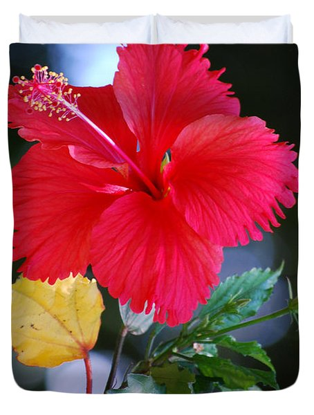 Red Hibiscus Flower Duvet Cover by Michelle Wrighton