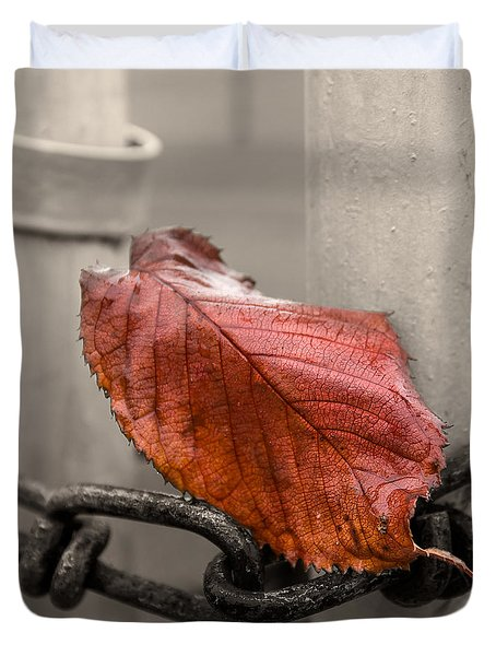 Red Leaf on Gate  Duvet Cover by Chris Tobias