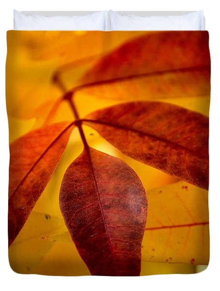 Red Leaves At Dawn Duvet Cover by Deb Halloran